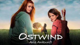 Windstorm 4: Ari's Arrival (2019)