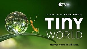 Tiny World (2020)