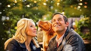 A Golden Christmas (2009)
