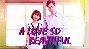 A Love So Beautiful (2020)
